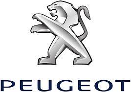 SPECCHIETTO RETROVISORE SX Peugeot 308